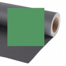 Raylab Фон бумажный 010 хромакей зеленый 2.72x11 м